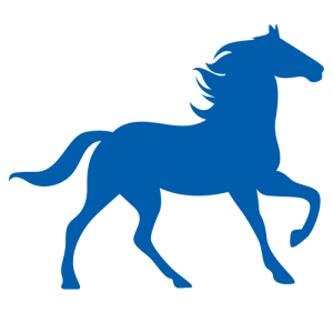equinekine.be favicon