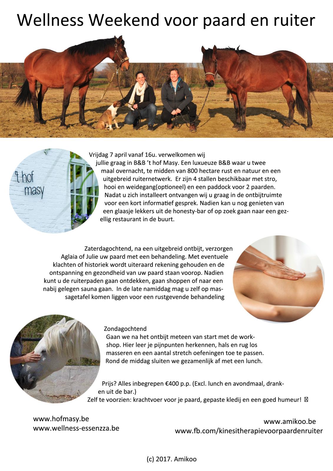 Wellnessweekend voor paard en ruiter