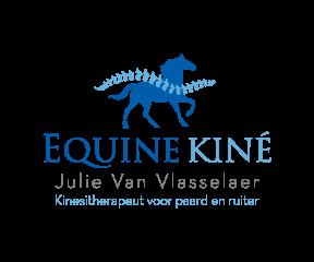 Equine Kiné